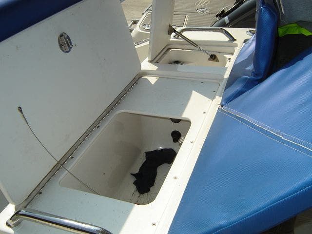 2004 Sonic boat for sale, model of the boat is 31CENTERCONSOLE & Image # 14 of 43