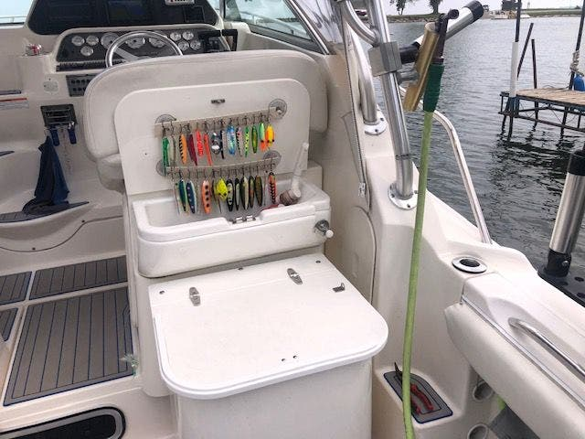 2006 Wellcraft boat for sale, model of the boat is 290 COASTAL & Image # 13 of 27