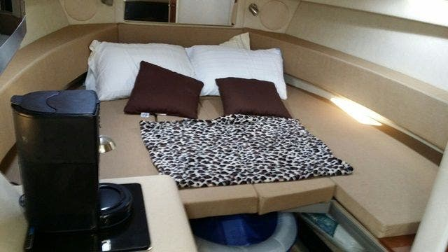 2012 Sea Ray boat for sale, model of the boat is 260 SUNDANCER & Image # 19 of 26
