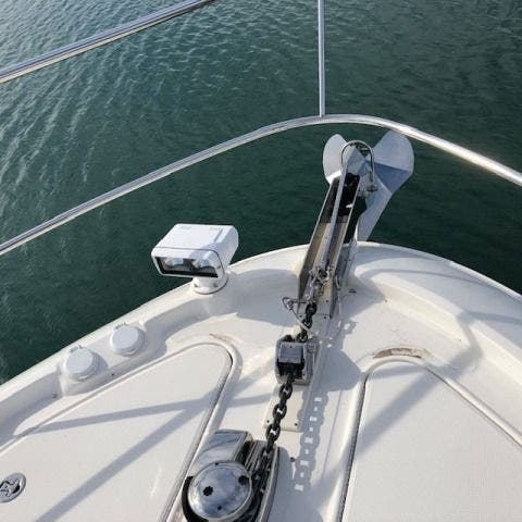 2016 Sea Ray boat for sale, model of the boat is L650 EXPRESS & Image # 3 of 67