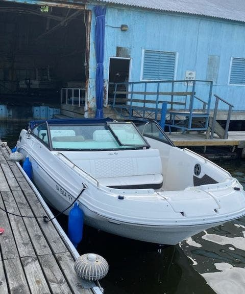 2019 Sea Ray boat for sale, model of the boat is 250 SDX & Image # 4 of 29
