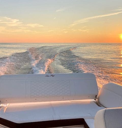 2019 Sea Ray boat for sale, model of the boat is 250 SDX & Image # 20 of 29
